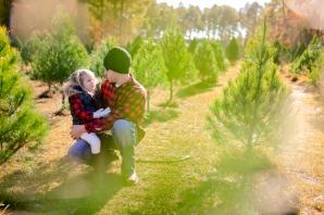 ChristmasTreeHunt-0997
