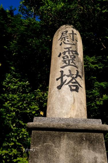 Japan_WEB-6620