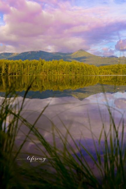 Alaska-7345